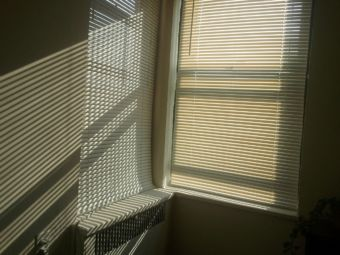 sunlight filters through blinds