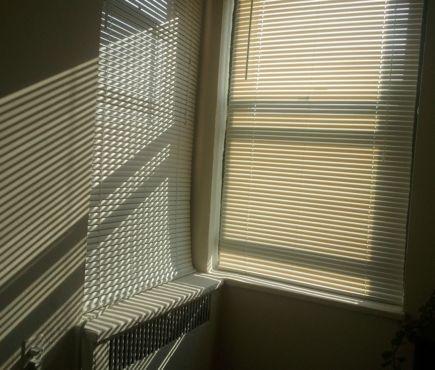 sunlight filters through blinds
